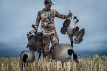 82716-tony-walking-with-geese-4