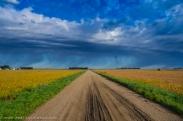 91916-dirt-road-rain