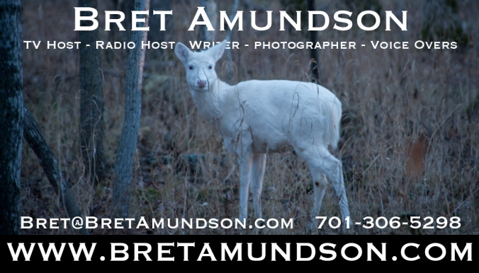 ba-business-card-white-deer