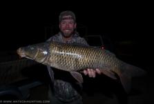 Bowfishing for carp