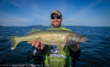 Columbia River walleye fishing with Bill Saunders